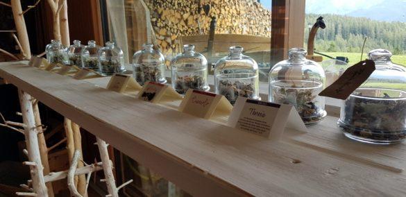 Mas Vinal, herbs of the Alps